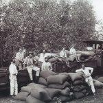 A Ferrovia e suas histórias desconhecidas I - Os Barões do Café realmente existiram ?