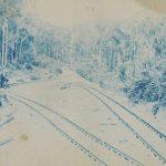 A Ferrovia e suas histórias desconhecidas II - Desbravando o Brasil